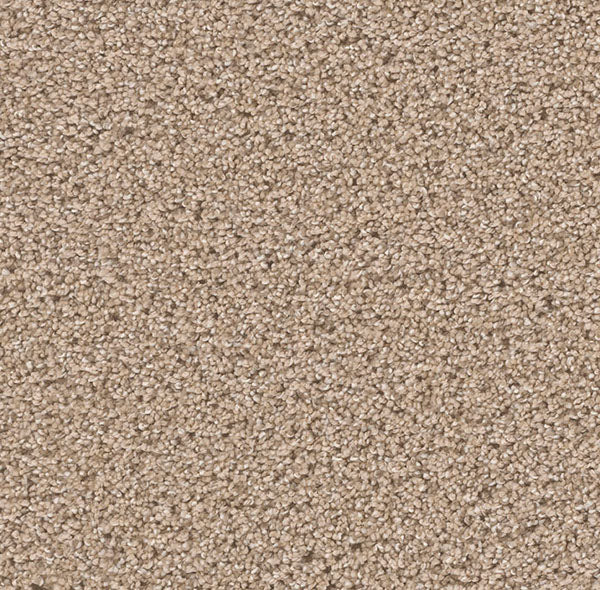 Dreamweaver Carpet | Can't Miss | - 726 Ginger