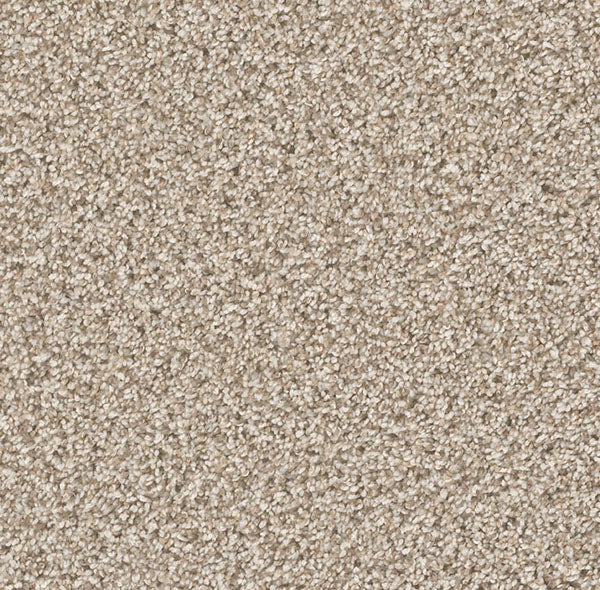Dreamweaver Carpet | Can't Miss | - 758 Seashells