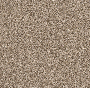 Dreamweaver Carpet | Can't Miss | - 775 Mocha