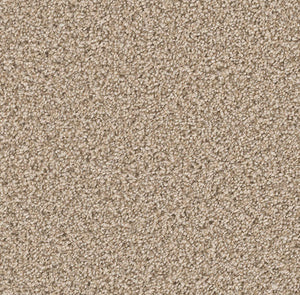 Dreamweaver Carpet | Can't Miss | - 824 Linen