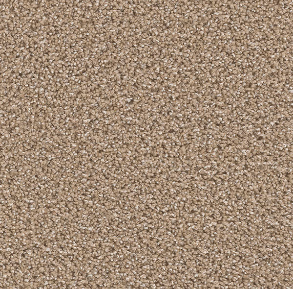 Dreamweaver Carpet | Can't Miss | - 825 Wicker