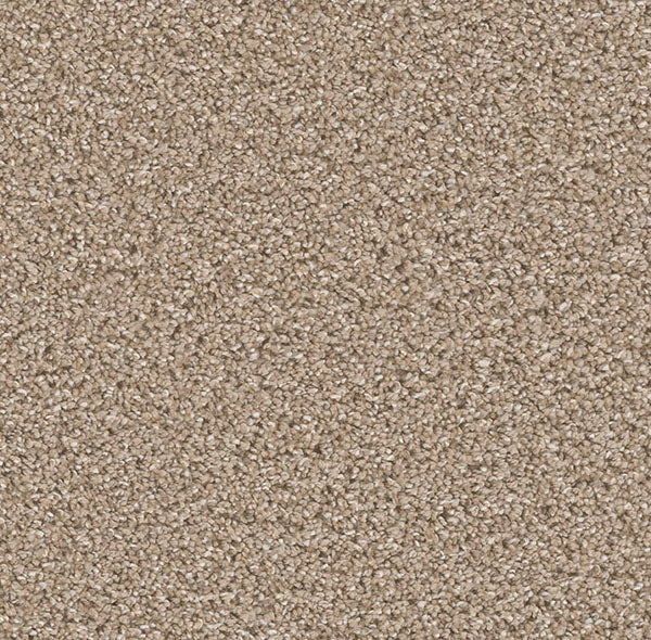 Dreamweaver Carpet | Can't Miss | - 883 Tumbleweed