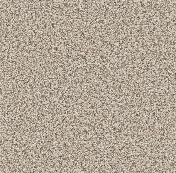 Dreamweaver Carpet | Can't Miss | - 905 Stucco