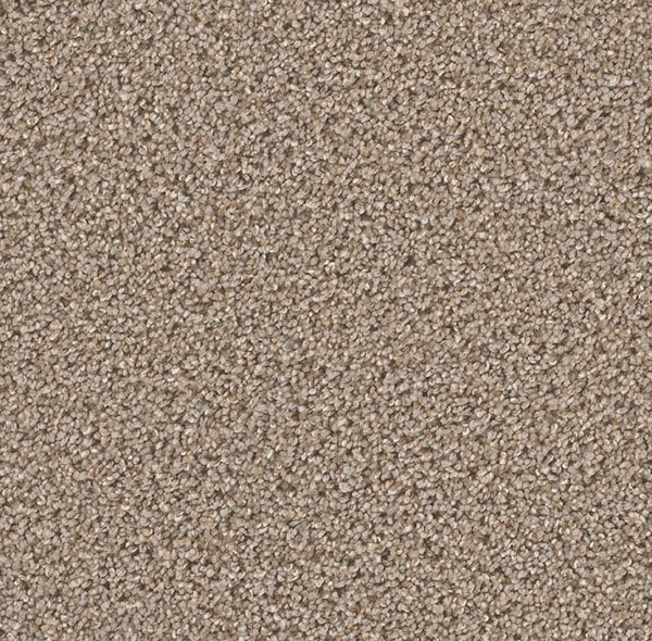 Dreamweaver Carpet | Can't Miss | - 945 Ash