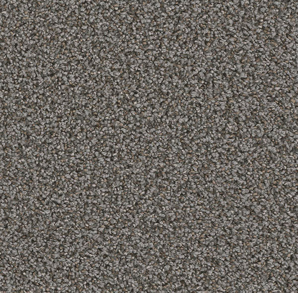 Dreamweaver Carpet | Can't Miss | - 958 Magma