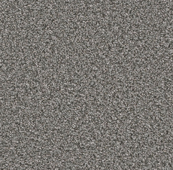 Dreamweaver Carpet | Can't Miss | - 959 Zinc