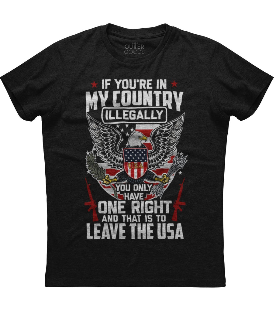 If you are in my country illegaly T-Shirt (O)