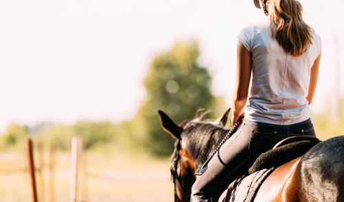 Hot Weather Horse Riding Tips