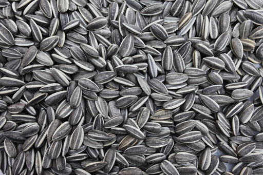 Grey-Stripe Sunflower Seeds
