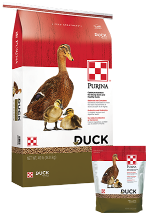 Duck & Duckling Feed Pellets