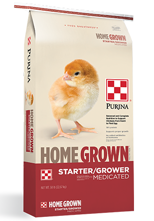 Home Grown Starter/Grower 20% Pellet