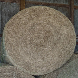 Coastal Hay Roll - Horse Quality