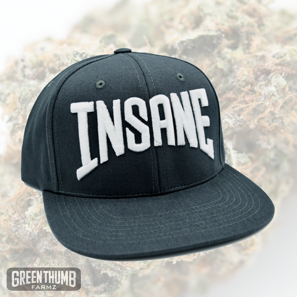 'Insane' Grey Snapback