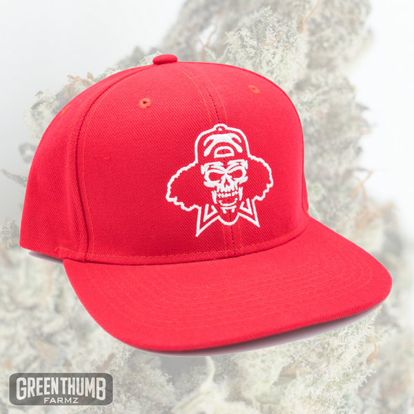'Insane OG' Red Snapback