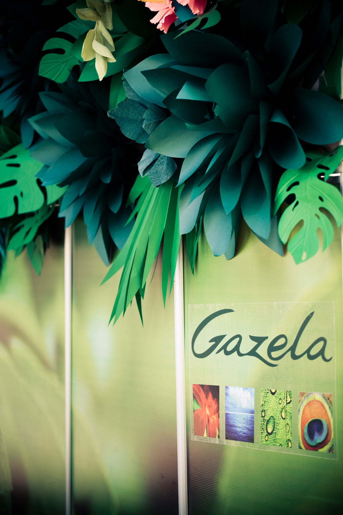 Gazela Bar Photowall with paper flowers
