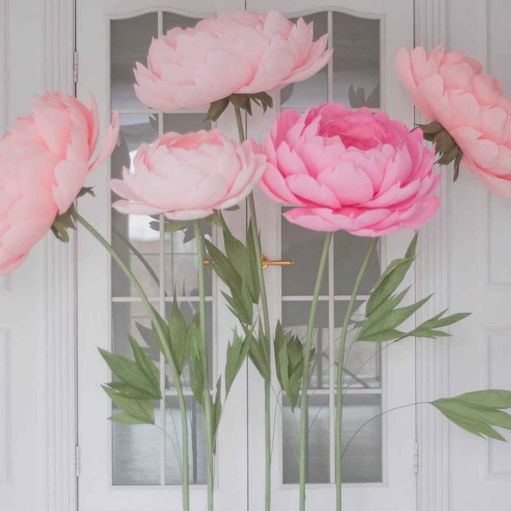 5 Oversized Paper Peonies including Metal stand - Mio Gallery