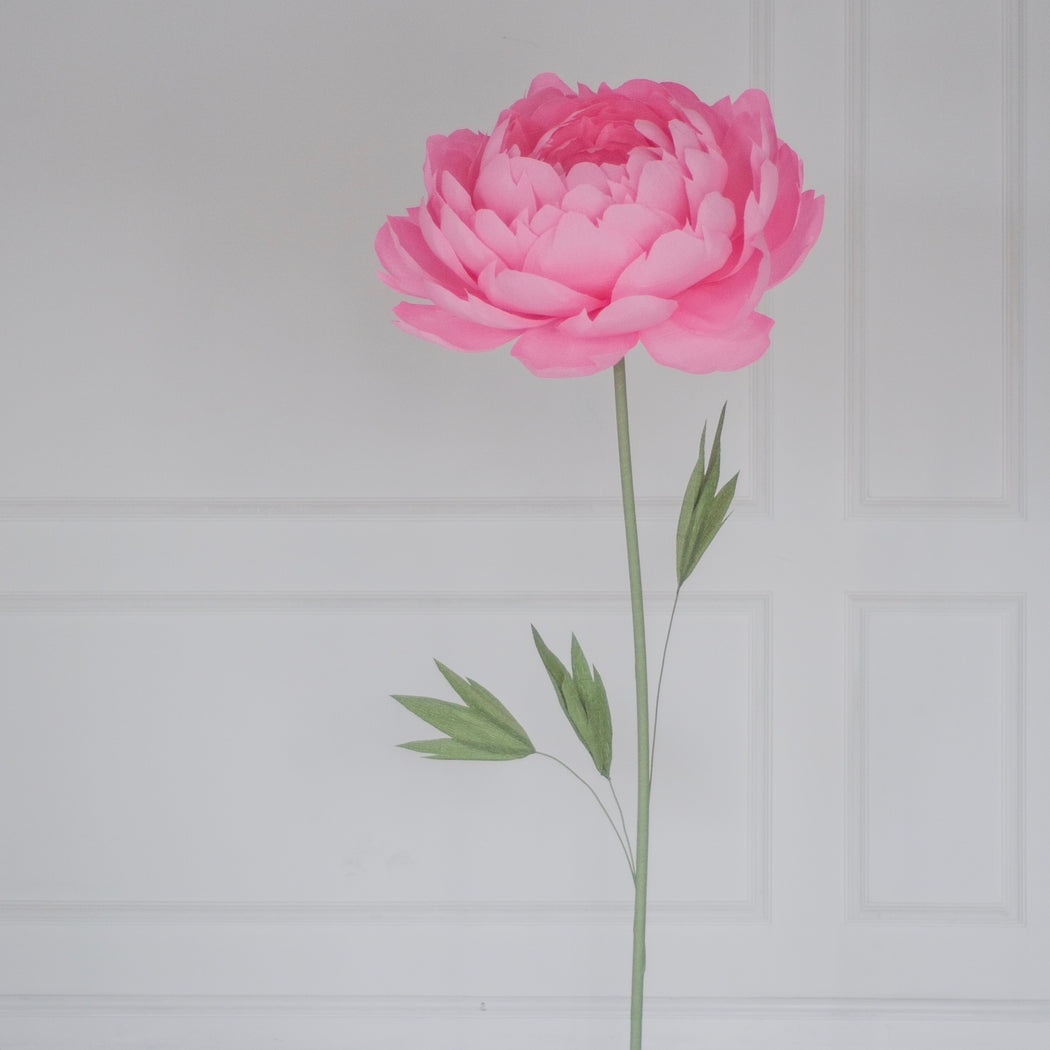 Single Paper Peony on metal Base - Mio Gallery