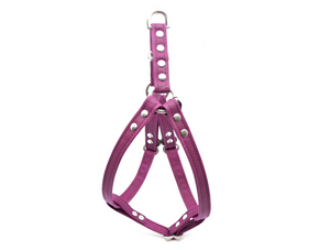 Berry Waxed Canvas Dog Harness