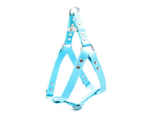 Turquoise Cork Dog Harness