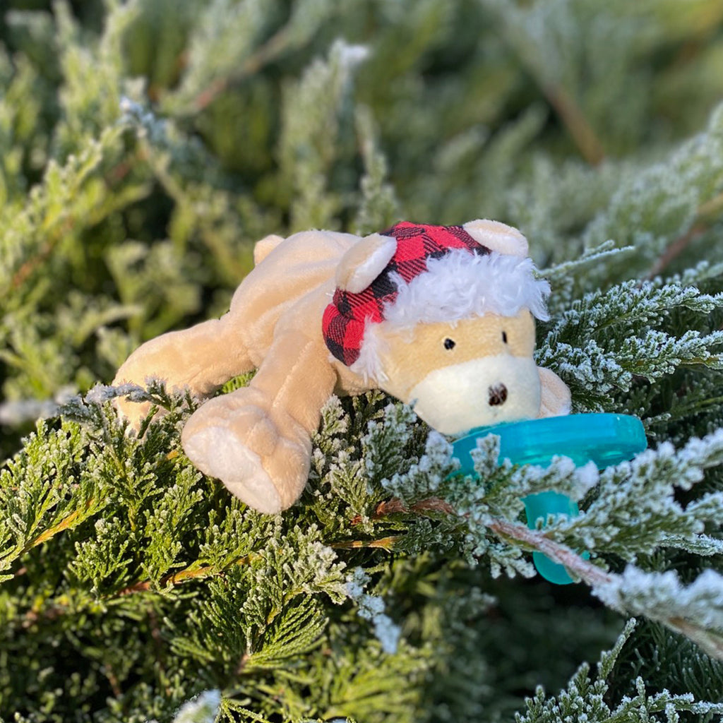 lifestyle photo of WubbaNub wooly bear on snow tipped evergreens