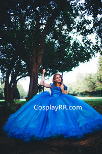 2015 Live Action Cinderella Dress for Sale