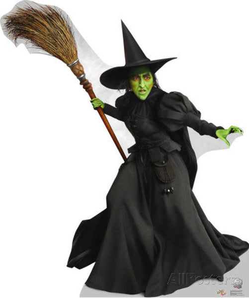 Wizard of Oz Evil wicked Witch Momba Costume Adults for Women with Hat