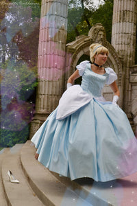 Adult Cinderella Costumes for Women Cinderella Halloween Dress