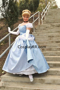 Cinderella Dress Park Version Swirl Gown for Adult with Gloves