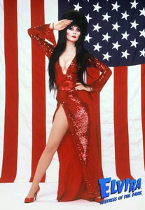 Red Elvira Mistress of the Dark Costume - Red Elvira Dress Elvira Costume Cassandra Peterson