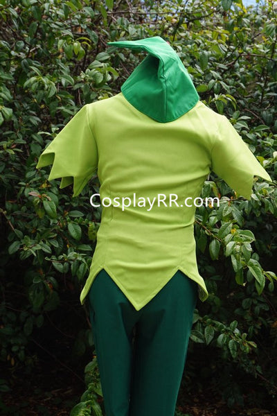 Peter Pan costume adults male