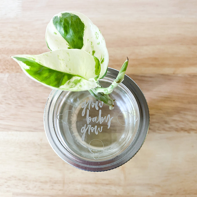 Closed Hole Mason Jar Topper