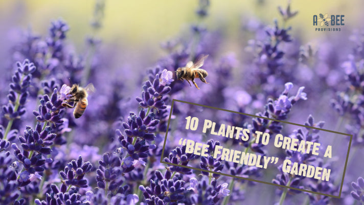 Want to Save Bees? Add These Plants to Your Garden