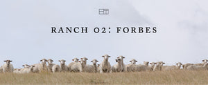 Welcome, Ranch 02: Forbes