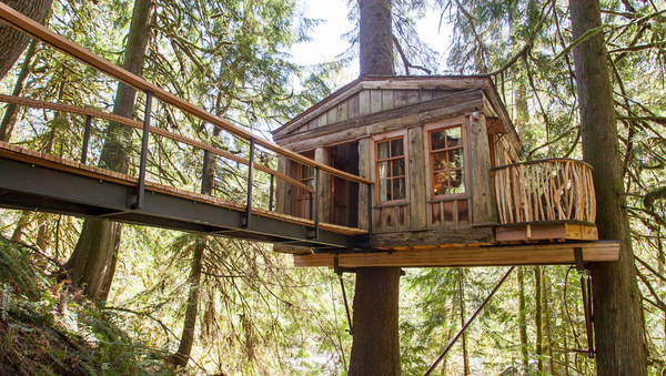 tree house point