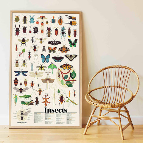 Poppik Fun Sticker Kit: Huge Illustrated Insect Poster for Children