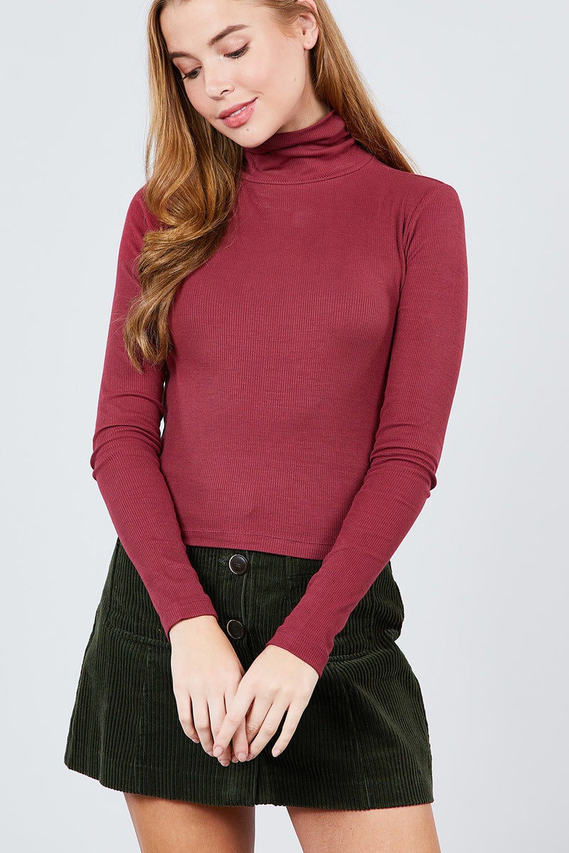 Long Sleeve Shirring Turtle Neck Rib Knit Top
