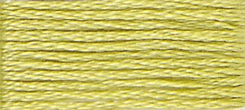 12 (Tender Green) - DMC Embroidery Floss