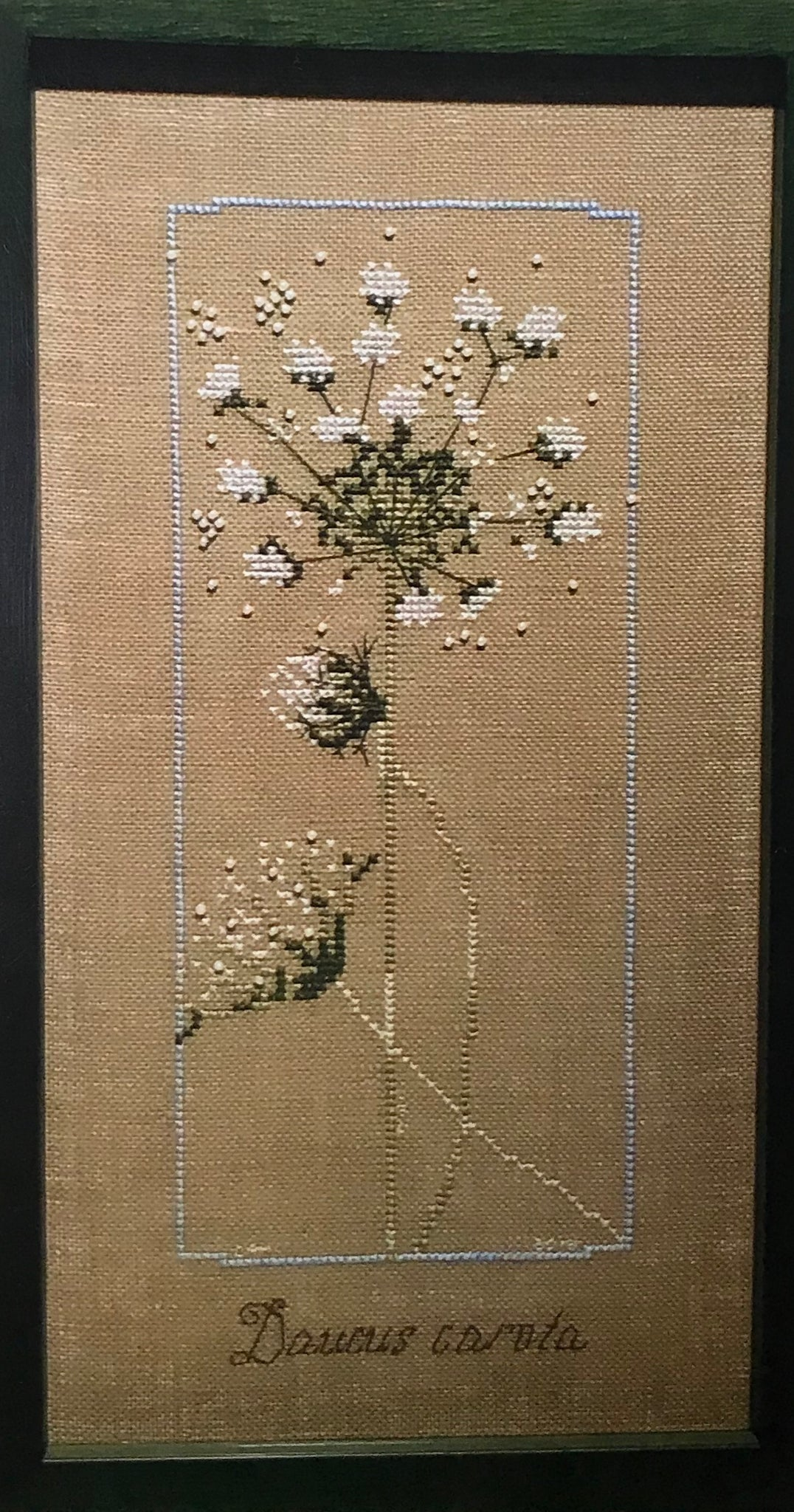Queen Anne's Lace - Cross Stitch Pattern