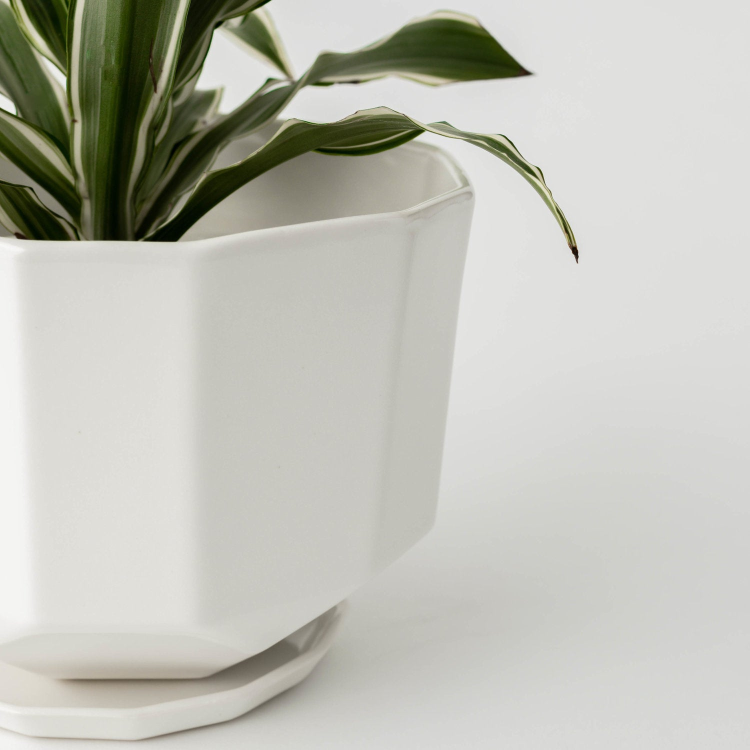 "8"" Convivial Original Riveted Planter in Ivory"