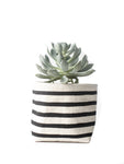 "4"" Gray Green Goods Canvas Basket in Natural with Black Stripes"