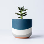 "4"" Wave Pot in Blue"
