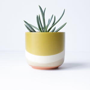 "4"" Wave Pot in Mustard"