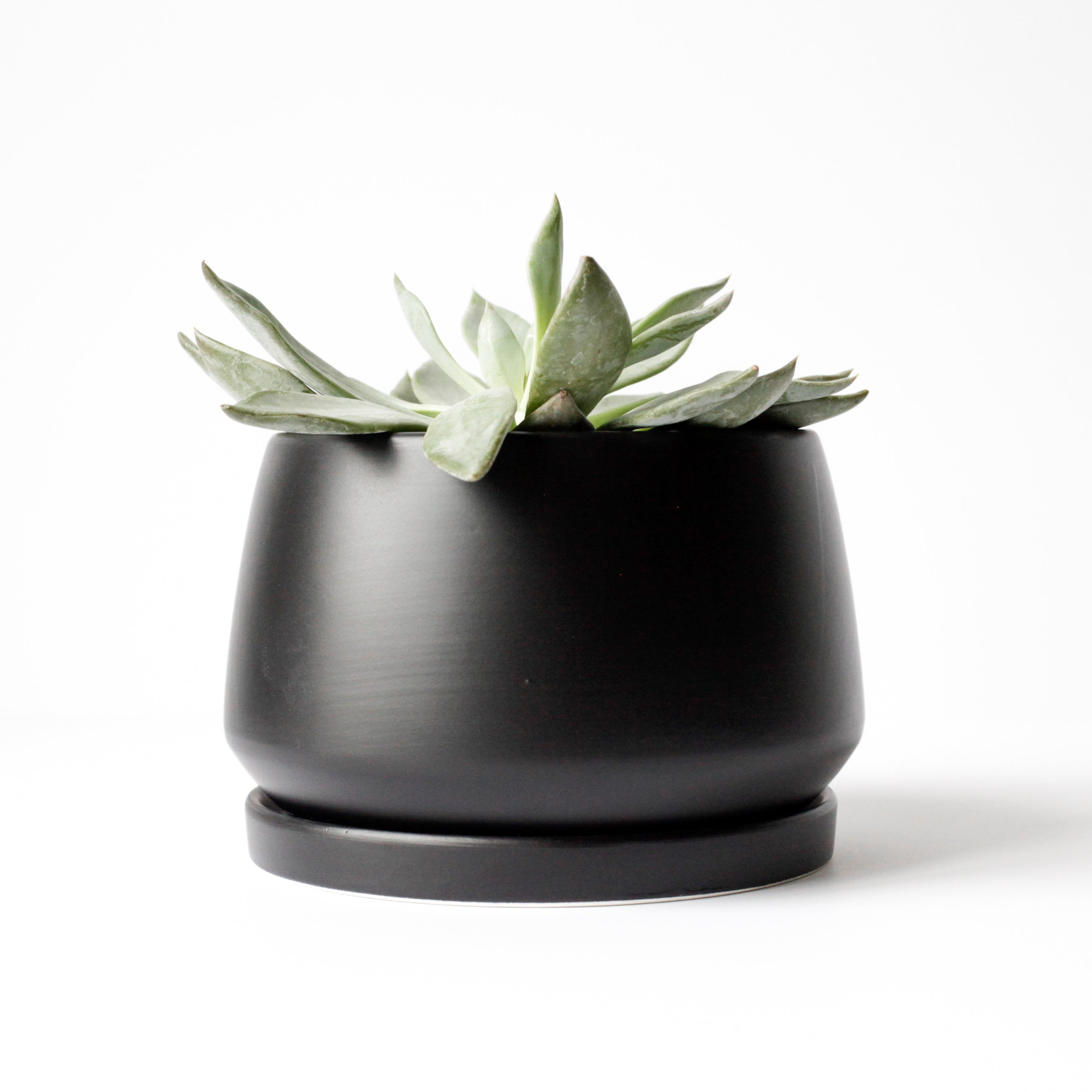 "6"" Shallow Ceramic Pot in Black"