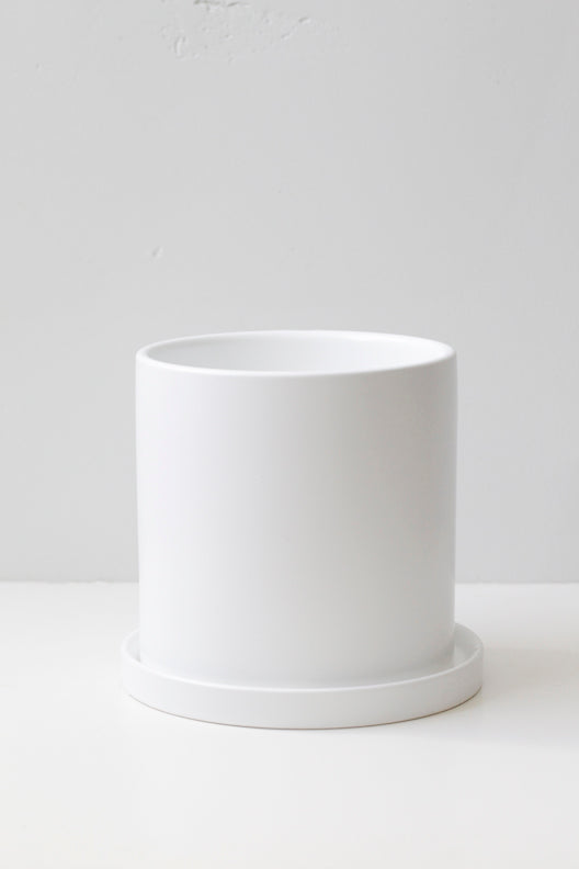 "4"" Ceramic Pot in White"