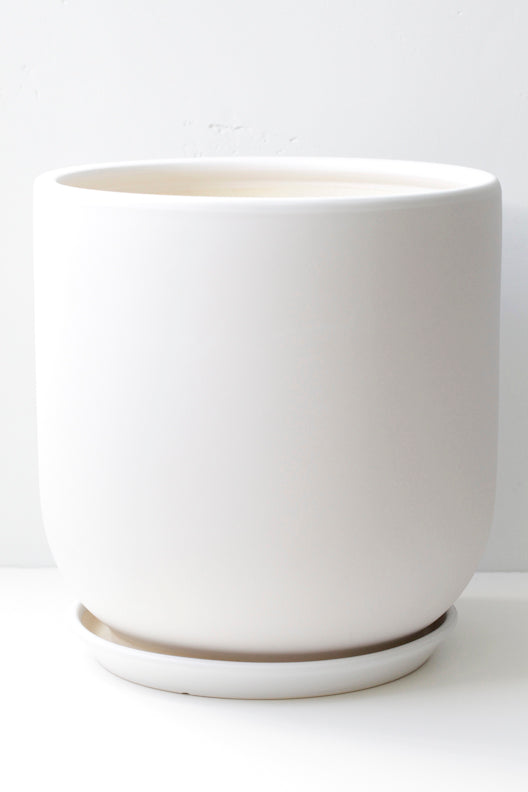"10"" Ceramic Pot in White"
