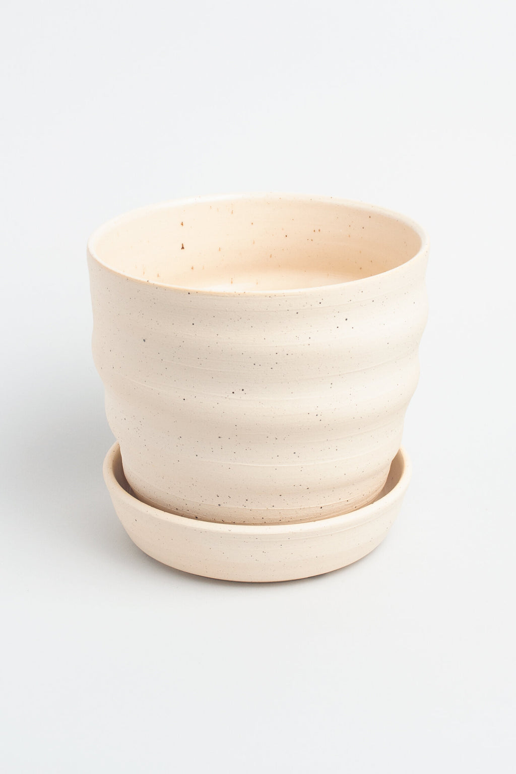 "6"" Sea Salt Water Planter in Sand"