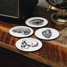 Load image into Gallery viewer, Anatomy Coasters Set