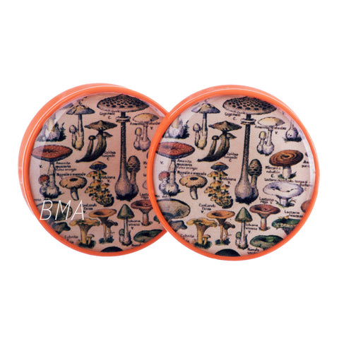 book of mushrooms plugs