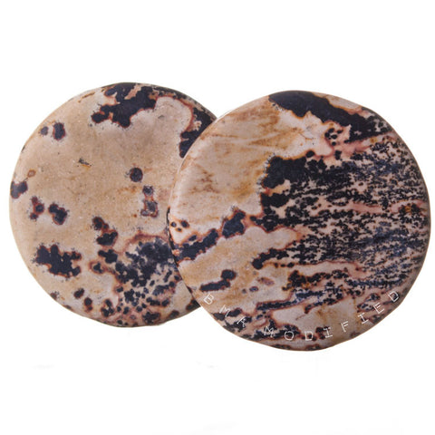 petrified wood plugs