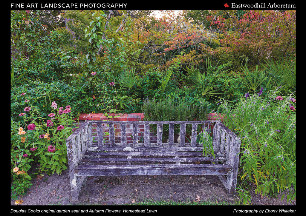 Douglas Cooks original garden seat and Autumn Flowers, Homestead Lawn